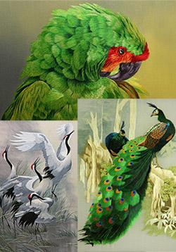 Вышитые шелком птицы