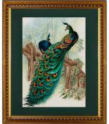 Картина «Павлины»