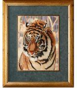Картина «Взгляд тигра»